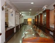 Salle ostéologie